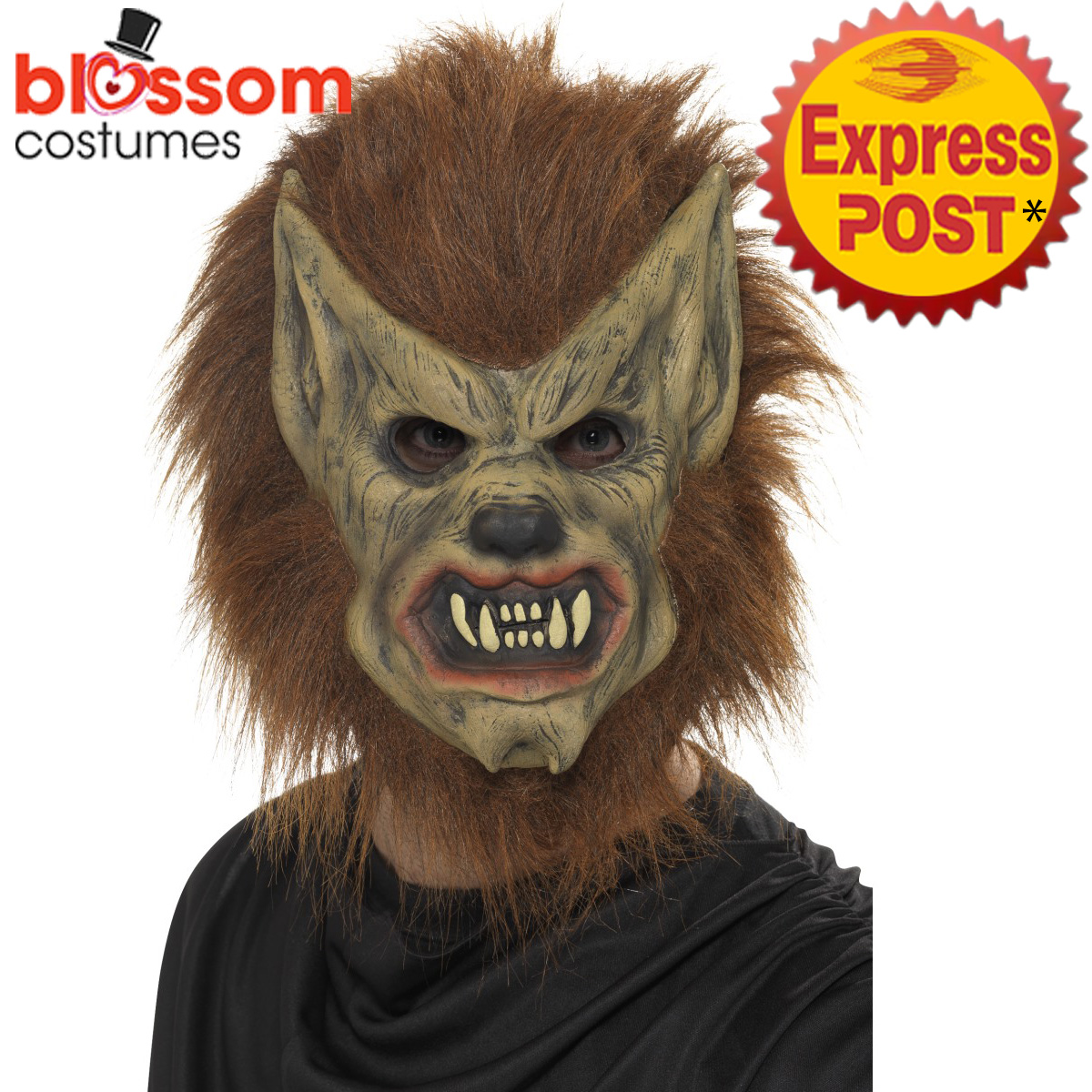 Image is loading AC152-Adults-Brown-Werewolf-Mask-Mens-Ladies-Halloween-  sc 1 st  eBay & AC152 Adults Brown Werewolf Mask Mens Ladies Halloween Wolf Costume ...