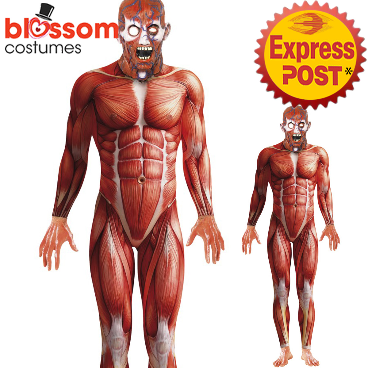 Ca433 Anatomy Man Costume Mens Muscle Halloween Fancy Dress Second
