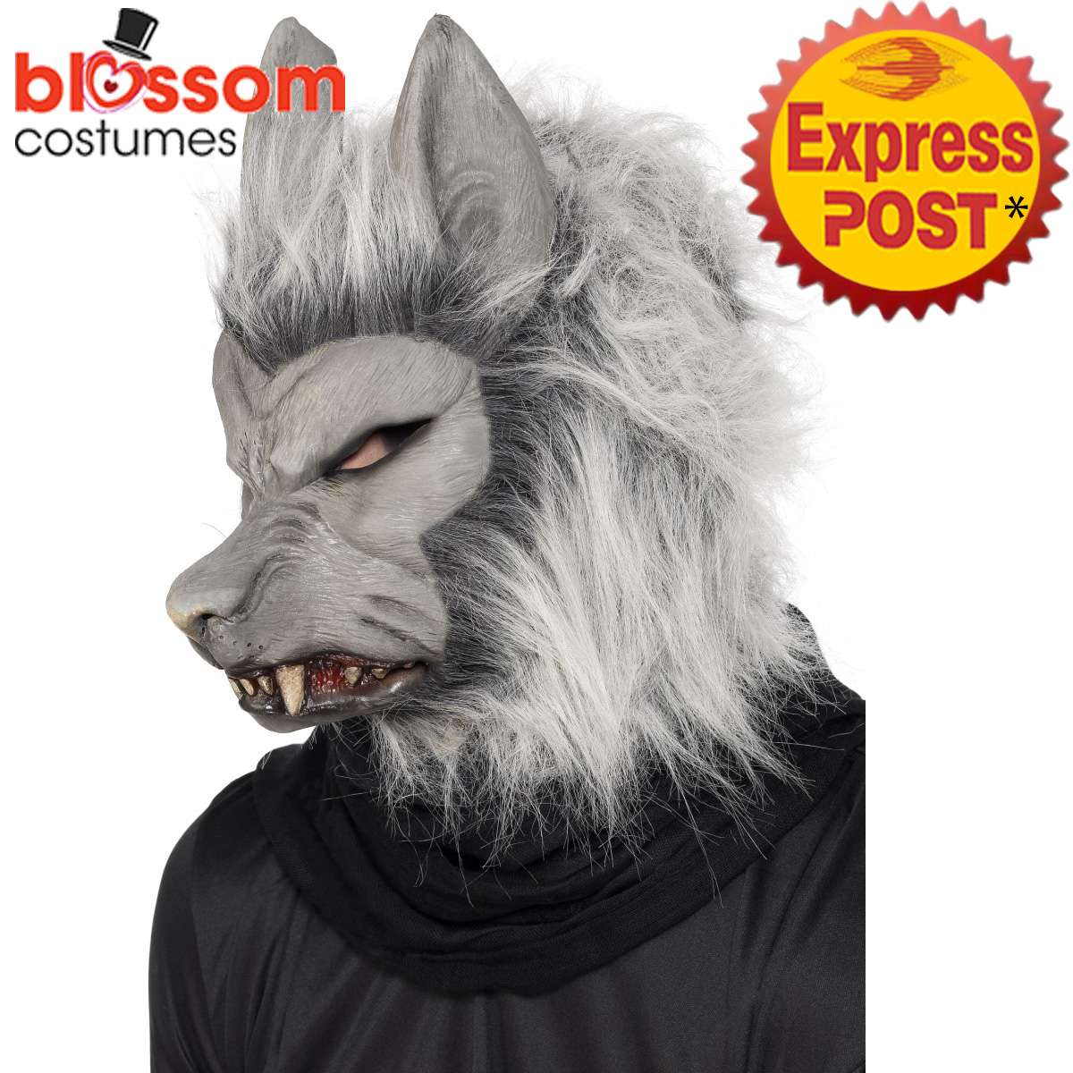 Image is loading AC154-Adult-Grey-Werewolf-Mask-Mens-Ladies-Halloween-  sc 1 st  eBay & AC154 Adult Grey Werewolf Mask Mens Ladies Halloween Wolf Costume ...