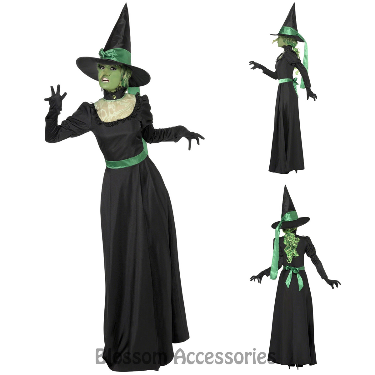 CL544 Wicked Witch Of the West Green Wizard of Oz Halloween Fancy ... a23082858e9c
