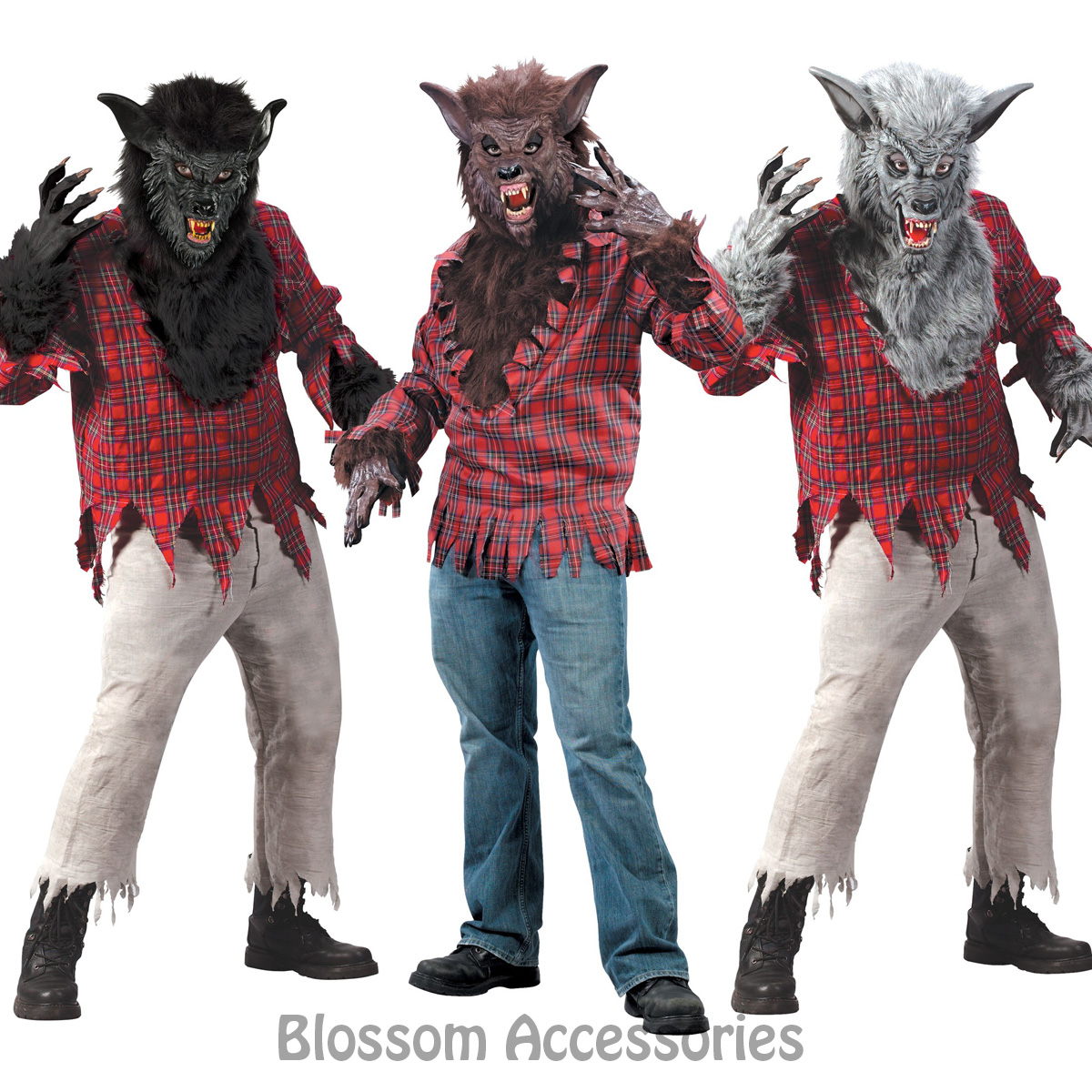Image is loading CL132-Werewolf-Halloween-Costume-Big-Bad-Wolf-Man-  sc 1 st  eBay & CL132 Werewolf Halloween Costume Big Bad Wolf Man Animal Monster ...